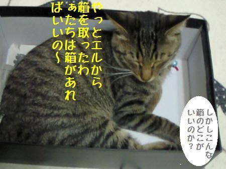 みなみ090108_1