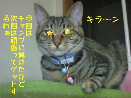 みなみ090118_5a