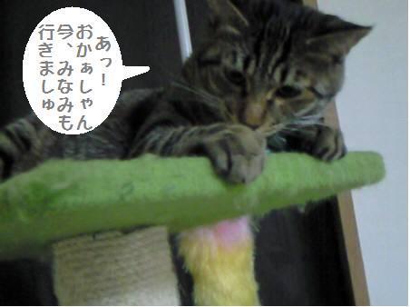 みなみ_090120_1a