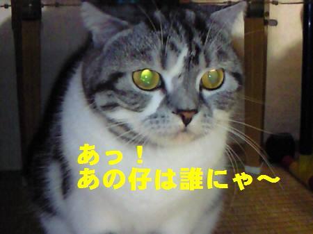 千葉県K様_081109_3a