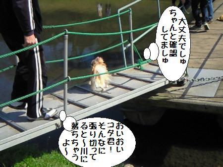 コタ君090329_2
