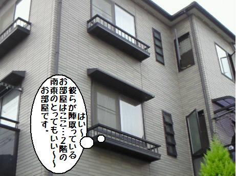 200905271729000.jpg