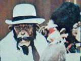 チンパン 2