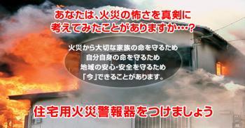 2_20110308165728.jpg