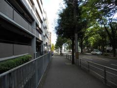 DSCN0578.jpg