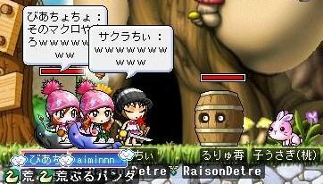 Maple0003 (15)