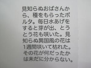 2010-03-07 005