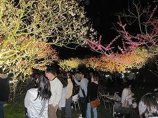 2010,05,15平岡梅林公園 009