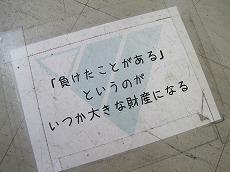 2011-10-15 009