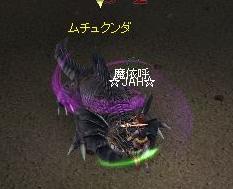 tokage03.jpg