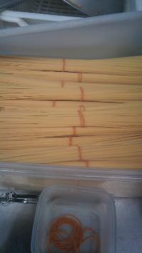 pasta-image.jpg