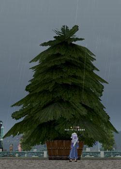 そびえ立つ ただの大木