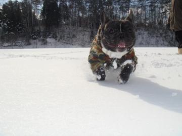 雪マーチ4