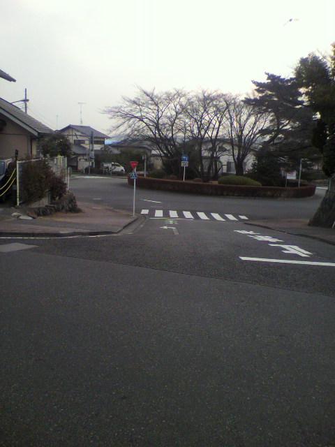 2011020607210000.jpg