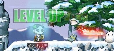 Maple8113a.jpg