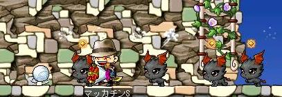 Maple8132a.jpg