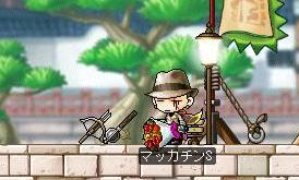 Maple8145a.jpg