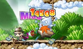 Maple8238a.jpg