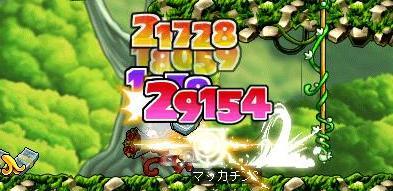 Maple8311a.jpg