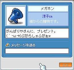 Maple8324a.jpg