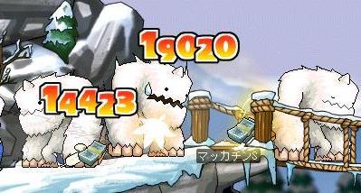 Maple8334a.jpg