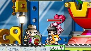 Maple8336a.jpg