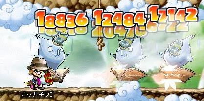 Maple8371a.jpg