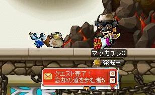 Maple8426a.jpg
