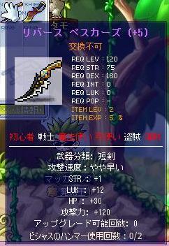 Maple8521a.jpg