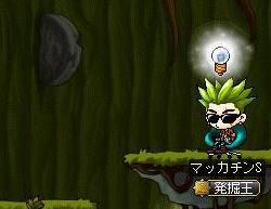 Maple8533a.jpg