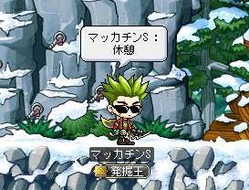Maple8677a.jpg