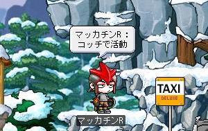 Maple8678a.jpg