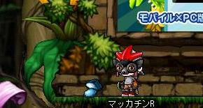 Maple8692a.jpg