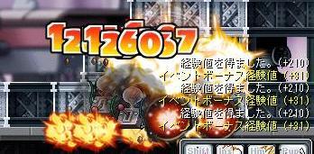 Maple8723a.jpg