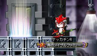 Maple8751a.jpg