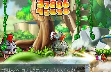 Maple8843a.jpg