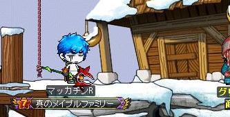 Maple8874a.jpg
