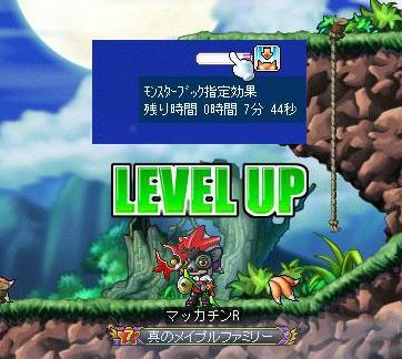 Maple8901a.jpg