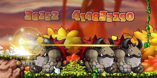 Maple8921a.jpg