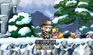 Maple9062a.jpg