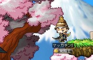 Maple9210a.jpg
