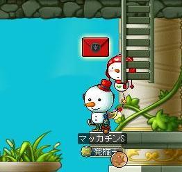 Maple9213a.jpg