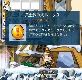 Maple9319a.jpg