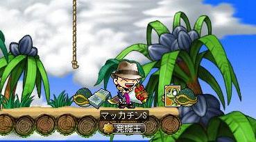 Maple9378a.jpg