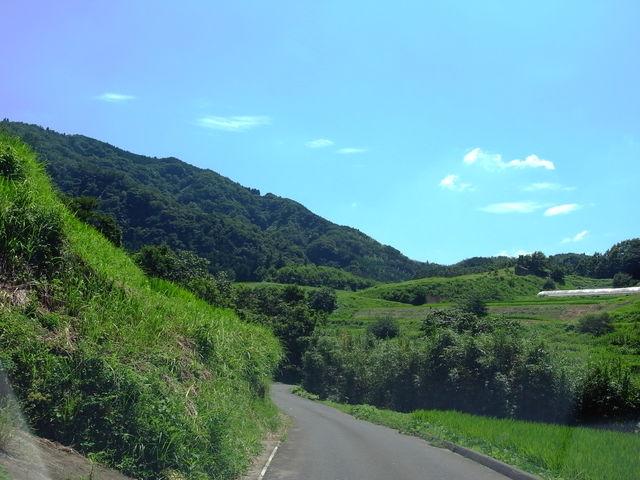 おおいたの山道