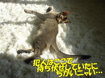 060628_02.jpg