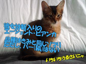 061118_2.jpg
