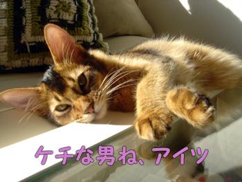 DB_20061124_02.jpg