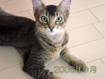 DB_20070605_05.jpg