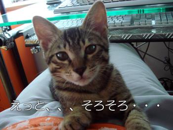 DB_20070904_03.jpg